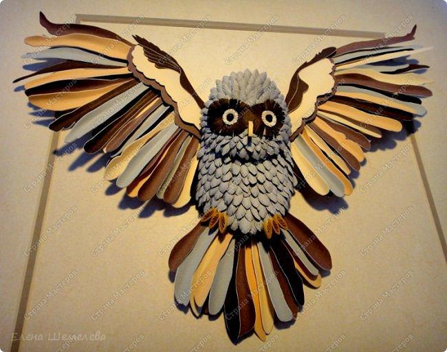 Добрый день, дорогой читатель! В народе сова считается самой умной птицей. Это символ мудрости, олицетворение знаний, человеческого опыта - зрелого мышления, означающий то, что люди не должны ничего предпринимать опрометчиво, а прежде хорошо и спокойно подумать.   фото 3