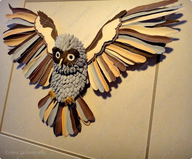 Добрый день, дорогой читатель! В народе сова считается самой умной птицей. Это символ мудрости, олицетворение знаний, человеческого опыта - зрелого мышления, означающий то, что люди не должны ничего предпринимать опрометчиво, а прежде хорошо и спокойно подумать.   фото 5