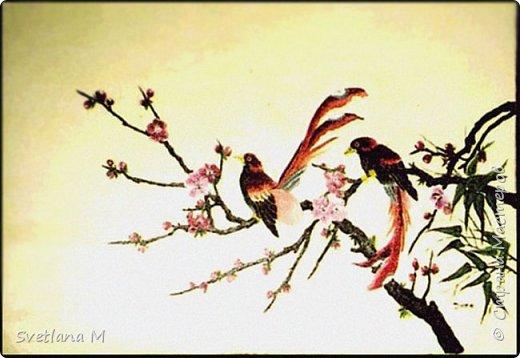 """Сделала ветку на Санате по МК Наты, куратор Natali1515  """"Сакура в цвету"""" С/овсем недавно ветви голы были.. А только солнце вышло из-за гор, Как снегом розовым сады покрылись, Убранством ярким покоряя взор. Рисует на холсте художник чудо, Атласным бархатом чаруя взгляд. Весны очарование повсюду- Цветы Эдема-сакуры наряд. В тех дивной красоты цветах, Есть волшебство и притяженье взгляда. Туда манит чудесных райских птах,                       Услада и покой чарующего сада фото 2"""