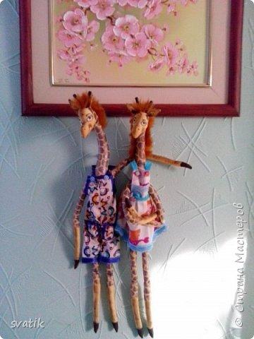Эти жирафушки уехали жить в город курорт Саки. Судя по их довольным мордашкам им там очень уютно и комфортно. фото 1