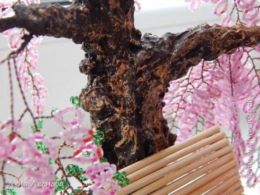 Моя новая работа- сакура. Я уже показывала розовое дерево. То дерево изначально задумывалось как сакура, но когда наплела веточек,понела что оттенок бисера слишком светлый и блёклый для сакуры. Тогда я собрала дома все остатки бисера розовых оттенков. Нашлось примерно 5 оттенков. Намешала их и добавила к розовому бисеру,который использовала в розовом дерево. Сочетание мне очень понравилось. Веточки тоже решила делать длинными, чтоб красиво свисали. Микса бисера мне не хватило. Пришлось бежать в магазин и докупать похожие цвета. Опять добавила к тому розовому и смешала. Думала что будет сильное отличие,но когда сравнила веточки,разницы практически не было. Наплела большую кучу веточек разной длины. Собрала дерево, не понравилось. Решила переделать. В итоге получилось то, чтотвы видете. фото 7