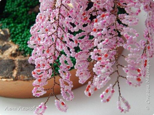 Моя новая работа- сакура. Я уже показывала розовое дерево. То дерево изначально задумывалось как сакура, но когда наплела веточек,понела что оттенок бисера слишком светлый и блёклый для сакуры. Тогда я собрала дома все остатки бисера розовых оттенков. Нашлось примерно 5 оттенков. Намешала их и добавила к розовому бисеру,который использовала в розовом дерево. Сочетание мне очень понравилось. Веточки тоже решила делать длинными, чтоб красиво свисали. Микса бисера мне не хватило. Пришлось бежать в магазин и докупать похожие цвета. Опять добавила к тому розовому и смешала. Думала что будет сильное отличие,но когда сравнила веточки,разницы практически не было. Наплела большую кучу веточек разной длины. Собрала дерево, не понравилось. Решила переделать. В итоге получилось то, чтотвы видете. фото 12