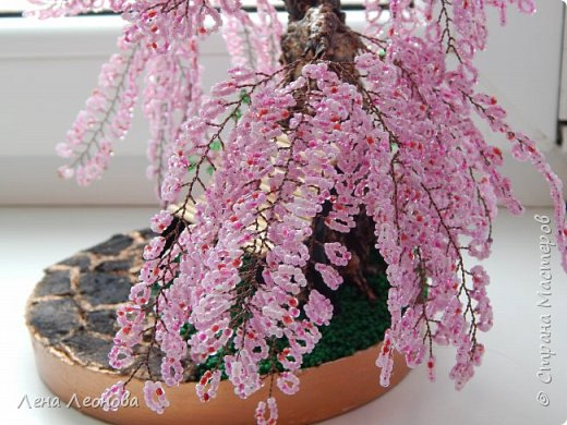 Моя новая работа- сакура. Я уже показывала розовое дерево. То дерево изначально задумывалось как сакура, но когда наплела веточек,понела что оттенок бисера слишком светлый и блёклый для сакуры. Тогда я собрала дома все остатки бисера розовых оттенков. Нашлось примерно 5 оттенков. Намешала их и добавила к розовому бисеру,который использовала в розовом дерево. Сочетание мне очень понравилось. Веточки тоже решила делать длинными, чтоб красиво свисали. Микса бисера мне не хватило. Пришлось бежать в магазин и докупать похожие цвета. Опять добавила к тому розовому и смешала. Думала что будет сильное отличие,но когда сравнила веточки,разницы практически не было. Наплела большую кучу веточек разной длины. Собрала дерево, не понравилось. Решила переделать. В итоге получилось то, чтотвы видете. фото 6