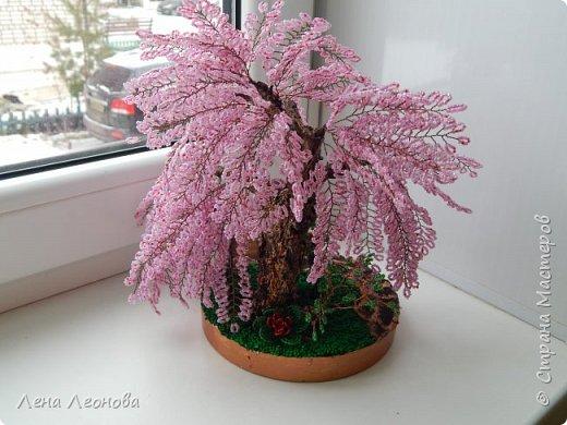 Моя новая работа- сакура. Я уже показывала розовое дерево. То дерево изначально задумывалось как сакура, но когда наплела веточек,понела что оттенок бисера слишком светлый и блёклый для сакуры. Тогда я собрала дома все остатки бисера розовых оттенков. Нашлось примерно 5 оттенков. Намешала их и добавила к розовому бисеру,который использовала в розовом дерево. Сочетание мне очень понравилось. Веточки тоже решила делать длинными, чтоб красиво свисали. Микса бисера мне не хватило. Пришлось бежать в магазин и докупать похожие цвета. Опять добавила к тому розовому и смешала. Думала что будет сильное отличие,но когда сравнила веточки,разницы практически не было. Наплела большую кучу веточек разной длины. Собрала дерево, не понравилось. Решила переделать. В итоге получилось то, чтотвы видете. фото 3
