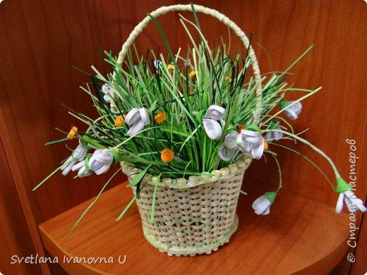 букет из хризантем, сделан из бумажных  салфеток фото 9