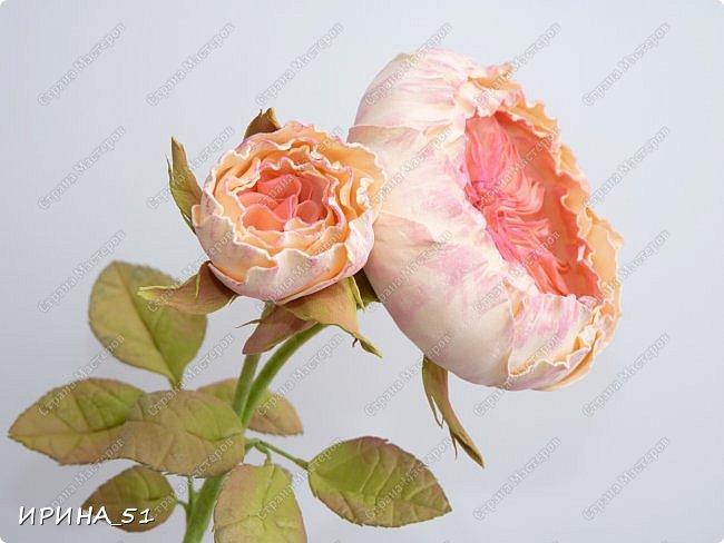 Пионовидная роза Давида Остина из фоамирана +заколочка. фото 3