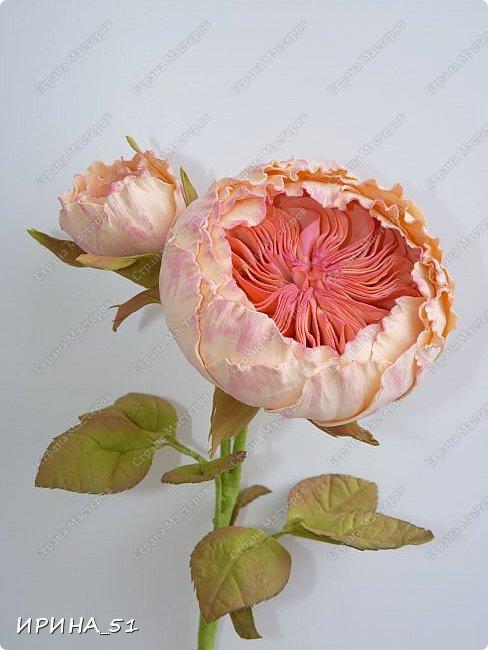 Пионовидная роза Давида Остина из фоамирана +заколочка. фото 4