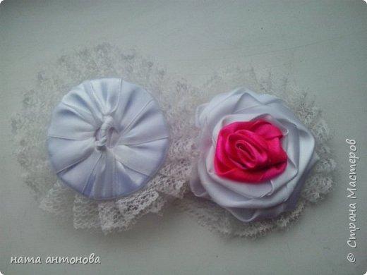 мои розы  фото 5