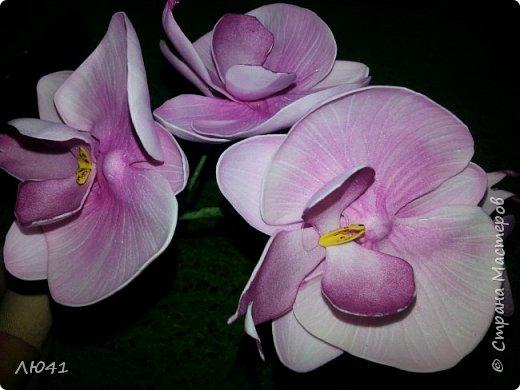Орхидею делала на МК Натальи Вознюк
