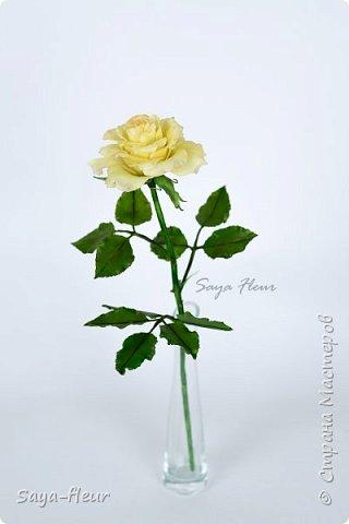 Здравствуйте, хотела бы показать свою работу, мои любимые розочки, стараюсь сделать соотношение качества и доступности, цветы пахнут настоящими розами. Сделаны из полимерной глины. фото 4