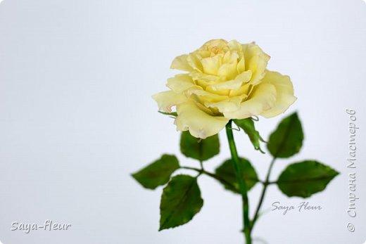 Здравствуйте, хотела бы показать свою работу, мои любимые розочки, стараюсь сделать соотношение качества и доступности, цветы пахнут настоящими розами. Сделаны из полимерной глины. фото 5