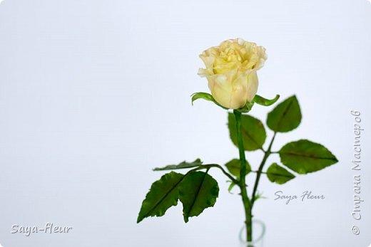Здравствуйте, хотела бы показать свою работу, мои любимые розочки, стараюсь сделать соотношение качества и доступности, цветы пахнут настоящими розами. Сделаны из полимерной глины. фото 6