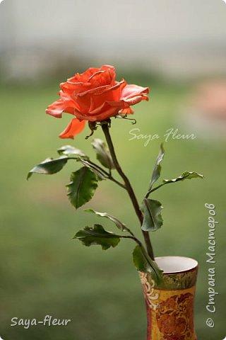 Здравствуйте, хотела бы показать свою работу, мои любимые розочки, стараюсь сделать соотношение качества и доступности, цветы пахнут настоящими розами. Сделаны из полимерной глины. фото 7