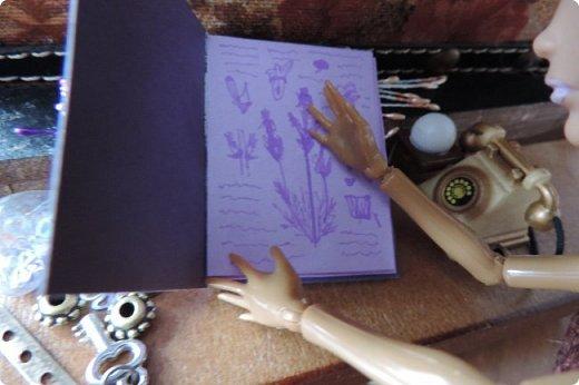 """Добро пожаловать в мой новый блог! И я сдаю работу на конкурс """"Загадочный блокнот"""". Да, я решила покреативить и сделать его маленьким, люблю все маленькое)) Сделала я его для себя, как брелочек, для своих малюсеньких рисуночков капиллярными ручками и линерами, но, тут же у меня родилась кукольная история...)) Думаю, получилось достаточно загадочно... Сначала покажу блокнот и оформление для фотосессии, потом историю)) фото 6"""
