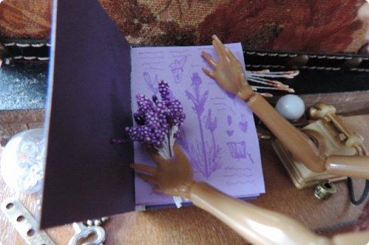 """Добро пожаловать в мой новый блог! И я сдаю работу на конкурс """"Загадочный блокнот"""". Да, я решила покреативить и сделать его маленьким, люблю все маленькое)) Сделала я его для себя, как брелочек, для своих малюсеньких рисуночков капиллярными ручками и линерами, но, тут же у меня родилась кукольная история...)) Думаю, получилось достаточно загадочно... Сначала покажу блокнот и оформление для фотосессии, потом историю)) фото 7"""