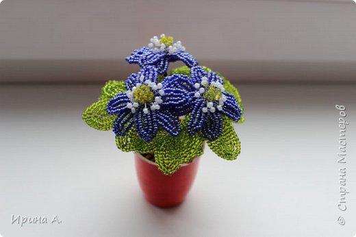 Цветы из бисера фото 2