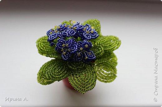 Цветы из бисера фото 4