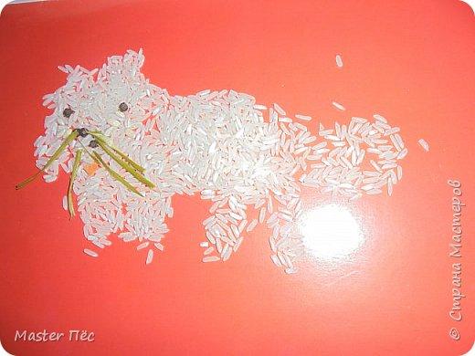 """Всем привет! Сдаю работу на конкурс """"Кошки и коты""""! (http://stranamasterov.ru/node/1000969) Сделал иллюстрацию песни Ларисы Брохман - Я пушистый беленький котёнок. И так, начнём!  Я пушистый беленький котёнок,  Не ловил ни разу я мышей,  И где бы я ни появился,  Где бы ни остановился,  Слышу от больших и малышей:  - Кис-кис! фото 5"""