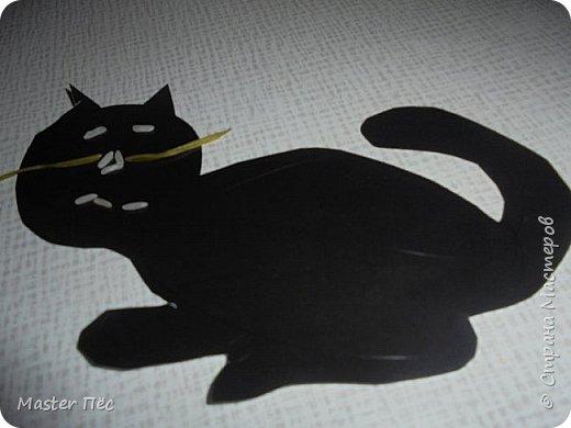 """Всем привет! Сдаю работу на конкурс """"Кошки и коты""""! (http://stranamasterov.ru/node/1000969) Сделал иллюстрацию песни Ларисы Брохман - Я пушистый беленький котёнок. И так, начнём!  Я пушистый беленький котёнок,  Не ловил ни разу я мышей,  И где бы я ни появился,  Где бы ни остановился,  Слышу от больших и малышей:  - Кис-кис! фото 4"""