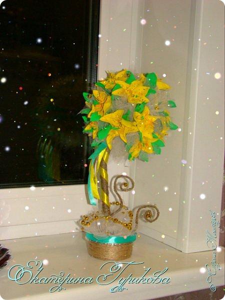 Жёлтые лилии!!!!!