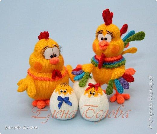 Семейство Куриных фото 2