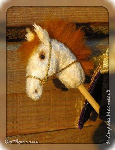 ПрЫнц...просто прЫнц.....Хотя нет, не просто....он еще на белом коне..... фото 3