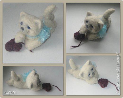 Валентинов кот фото 6