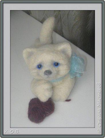 Валентинов кот фото 1