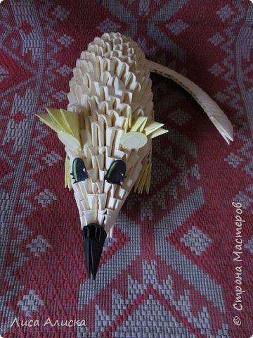 Крыска сделана по МК Наташи Редько http://stranamasterov.ru/node/168698?c=favorite Немного изменены нос,хвост,глазки,лапки и ушки. фото 1
