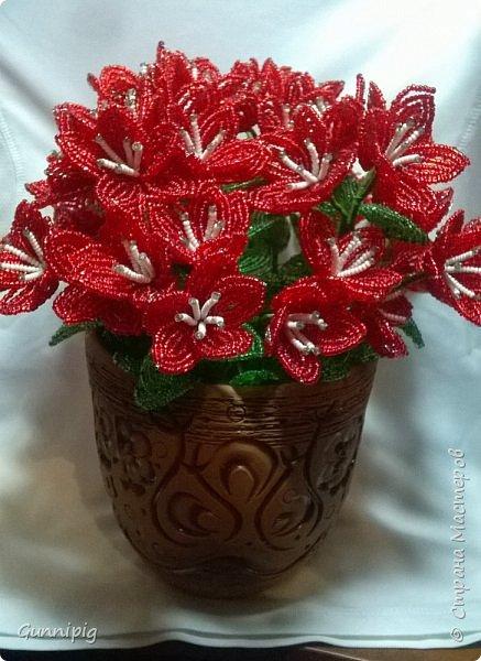 вот такой кустик получился под заказ. 51 цветочек и тонна бисера!)) фото 4