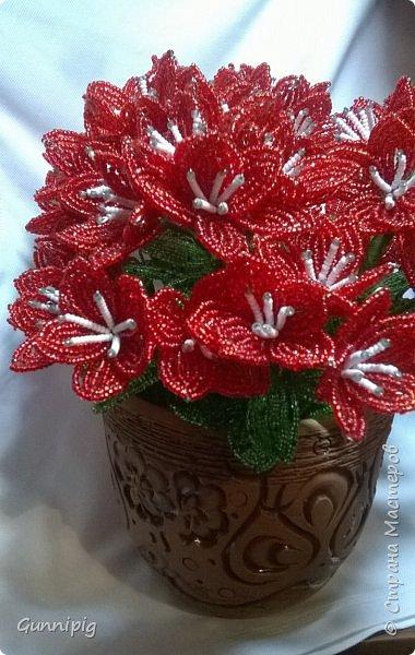 вот такой кустик получился под заказ. 51 цветочек и тонна бисера!)) фото 5