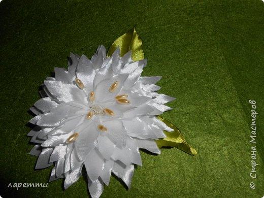 Цветы-как какое то наваждение.... фото 1