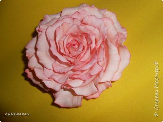 Цветы-как какое то наваждение.... фото 5