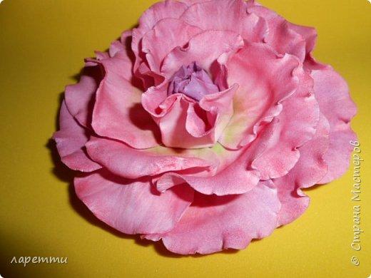 Цветы-как какое то наваждение.... фото 4