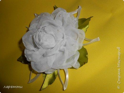 Цветы-как какое то наваждение.... фото 9
