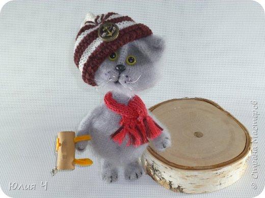 Всем здравствуйте! Решила показать свои вязаные игрушки. Первый котик был связан по авторскому описанию Веры Терекбаевой.  Ростиком получился 23см. фото 1