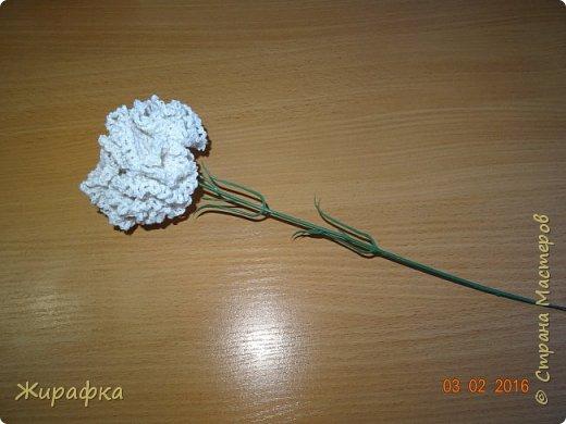 Гвоздики... фото 8