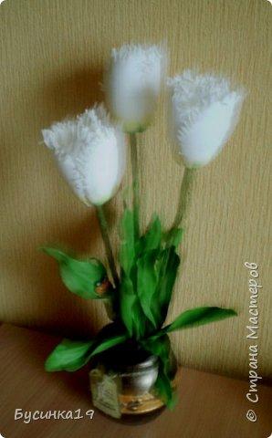 Белые тюльпаны фото 4
