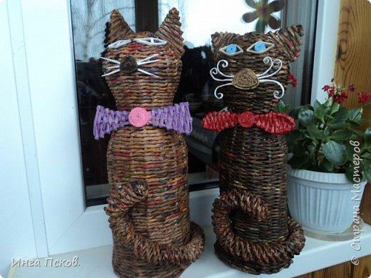 Мартовские коты. фото 1