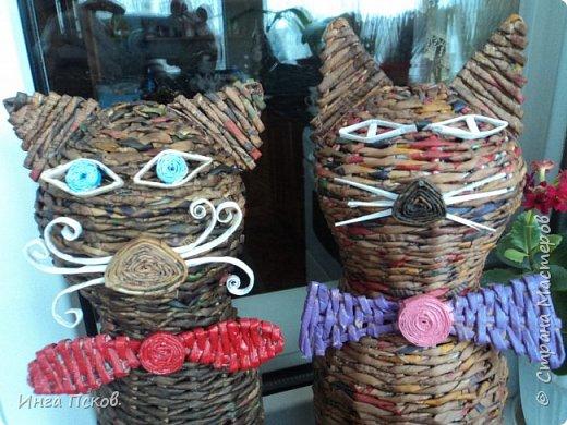 Мартовские коты. фото 2
