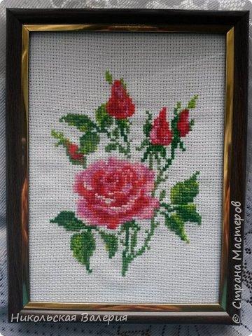 Веточка роз фото 1