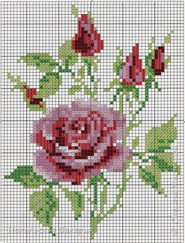 Веточка роз фото 2