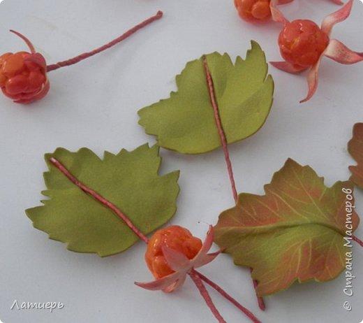Сегодня я покажу вам не совсем обычный способ изготовления ягод. Надеюсь, что он кому-нибудь пригодится или сподвигнет на новые свершения, и таким способом вы попробуете сделать не только морошку, но и , например, малину или ежевику)) фото 17
