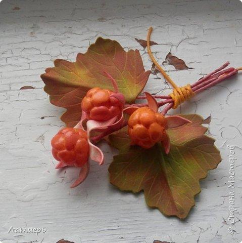 Сегодня я покажу вам не совсем обычный способ изготовления ягод. Надеюсь, что он кому-нибудь пригодится или сподвигнет на новые свершения, и таким способом вы попробуете сделать не только морошку, но и , например, малину или ежевику)) фото 1