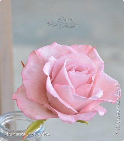 Роза из холодного фарфора. фото 4