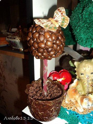 Самое первое деревце фото 3