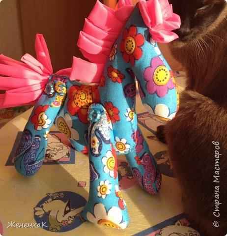 Вот такие красотки получились для любимой дочурки! Вдохновила работа мастерицы Петельки http://stranamasterov.ru/node/541706?c=favorite фото 6