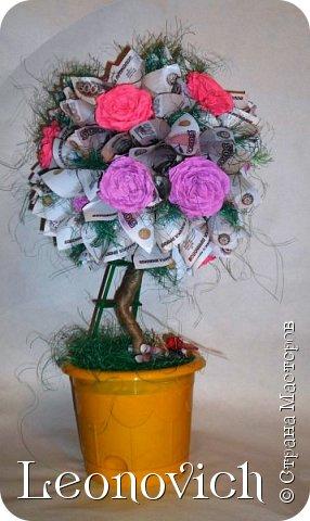 "Дерево ""Роза денежная"" фото 1"