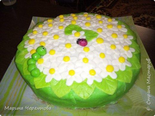Самый первый тортик для любимой мамочки на день её рождения!!! фото 2