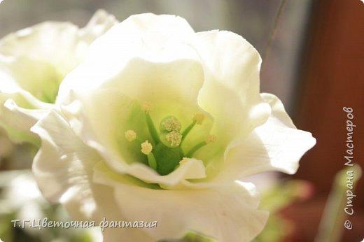 Всем привет!Поступил заказ на двух-уровневую композицию.Основные цветы:розы и эустомы.Остальное мелочевка.Вот решила отснять,пока они на одном уровне)))Это не все,которые будут,но одни из первых)) фото 6